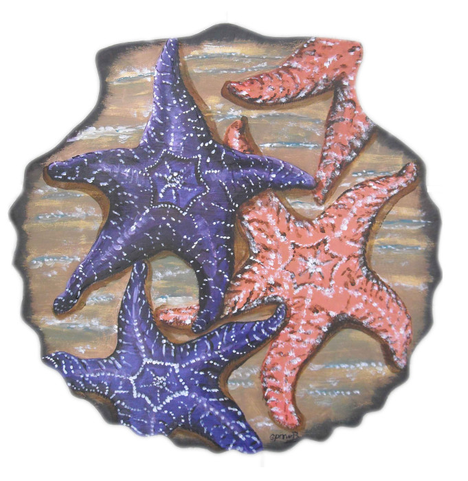 seashells-by-the-seashore-sechelt